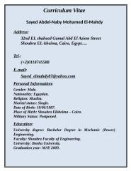 Mohamed Fawzy C.V.doc