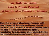 http://dc195.4shared.com/img/319584387/f7e354f/Les_devoirs_des_hommes_envers_.png?rnd=0.9802891780982224&sizeM=7