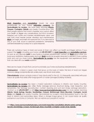 Mold Inspection and Remediation Services by ServiceMaster by Lovejoy.pdf