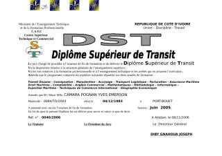 DST_CAMARA R40.doc