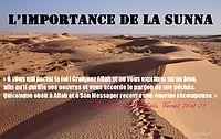 http://dc308.4shared.com/img/hp0Lrug8/s7/0.8451232870909626/importance_sounnah.png